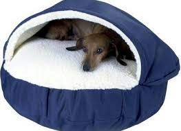 furniture coolaroo xl dog bed framed dog bed coolaroo dog bed dog