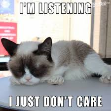 Grouchy Cat Meme - grumpy cat funny grumpy cat humor grumpy cat meme sarcastic funny