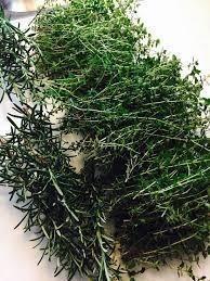 freezing herbs from your garden baxter gardens