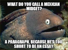 Mexican Racist Memes - meme 1