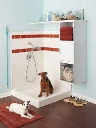 cool bathroom 17 insanely cool bathroom ideas for your doggies amazing diy
