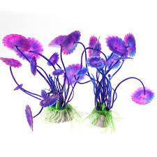 buy cheap cat bowls u0026 feeders for big save plastic purple