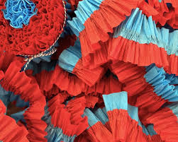 ruffled streamers and turquoise ruffled crepe paper streamers 36 party