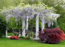 pergola design fabulous design pergola cool pergolas garden