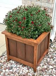 how to make a cedar and pine planter on the cheap square planter