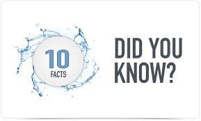 10 unique facts about learners learndash