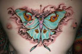 colorful butterfly on chest