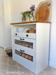 best 25 vegetable storage ideas on pinterest onion storage