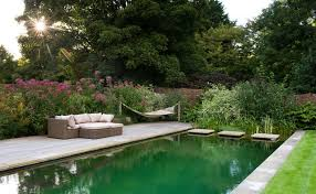 stand alone hammock pool traditional with beautiful garden deck