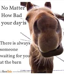 Soon Horse Meme - horse quote no matter how bad your day is there is always