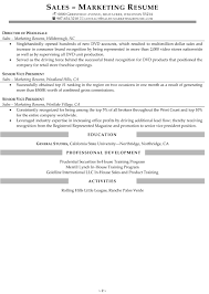 Resume Sample Vice President by Resume Samples For Sales And Marketing Jobs