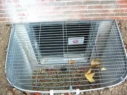 Basement Well Windows - basement egress window ladder well crawl space basement egress