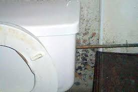 How To Remove Bathroom Mirror Remove And Get Rid Of Mold In Bathroom Wall Orange Mold