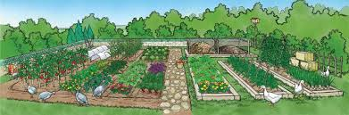 self sustaining garden 82 sustainable gardening tips organic gardening mother earth news