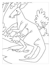 hip hop kangaroo coloring pages download free hip hop kangaroo