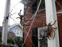 Decorate Your Home For Halloween Halloween Decorating Tips For Your Home Today U0027s Homeowner