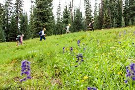 thanksgiving in the wilderness wilderness volunteers blog 2016