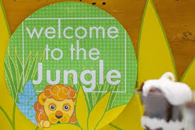 Birthday Decoration Ideas For Boy 19 Jungle Safari Themed Boy Party Ideas Spaceships And Laser Beams