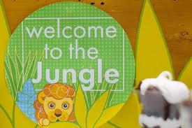 19 jungle safari themed boy party ideas spaceships laser beams