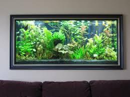 aquarium decoration ideas freshwater livingroom inspiring aquarium ideas for living room cool wall