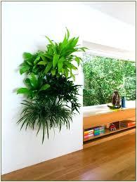 outdoor living wall plant pots vertical garden planter boxes