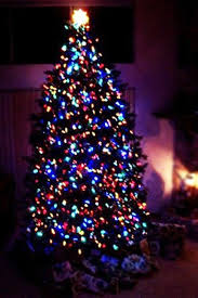 slim christmas tree with led colored lights extravagant multi colored lights christmas tree 4 trees with frosted