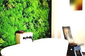 vegetable gardening indoor advantage of the landscape design