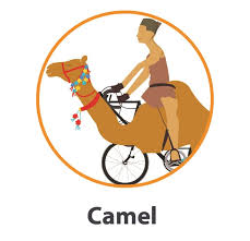 Camel Halloween Costume 20 Halloween Bike Costumes