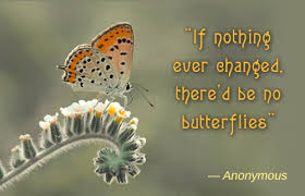 quotes about butterflies 2017 inspirational quotes quotes