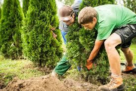 g rtner garten und landschaftsbau gärtner in eba garten und landschaftsbau oeschberg