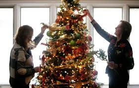 trees bring spirit to ronald mcdonald house