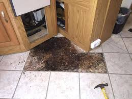 Floor Tile Repair Floor Tile Repair Large Size Of Octagon Floor Tiles Black And