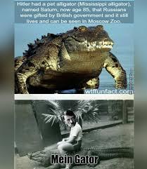 Alligator Memes - medium sized dump for you wwii lovers album on imgur