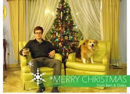 crazy christmas card photo ideas christmas lights decoration