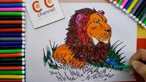 lion coloring kids color lion