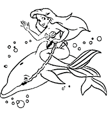 dolphin coloring pages pdf dolphin coloring sheet coloring page dolphin coloring pages dolphins