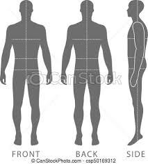 vector clip art of fashion man figure fashion body full length