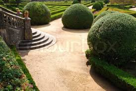 beautiful ornamental garden with green bushes stock photo