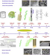 Kinds Of Wood Joints And Their Uses by Nanocellulose In Biomedicine Current Status And Future Prospect