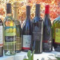 Best White Wine For Thanksgiving Best Wine For Thanksgiving Dinner Natashainanutshell Com