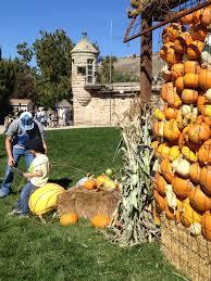 boise u0027s botanical gardens ushers in fall with festive affair oh