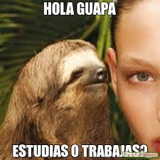 Hola Meme - hola guapa estudias o trabajas meme whisper sloth 11049