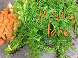 cuisiner les fanes de carottes je suis fan e marinette saperlipopette maman expat à