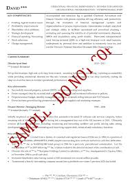 functional executive resume executive level resume 1 resume functional executive