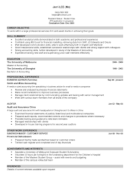 Resume Skills Summary Sample Example Of Cv With Photo