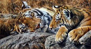 alan m hunt is one of the best wildlife artist in the his