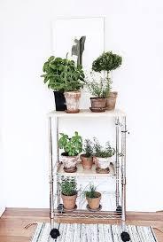 71 best botanisch interieur images on pinterest workshop home