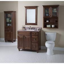 Home Decorators Collection Templin 30 in Vanity Cabinet ly in