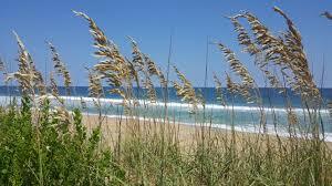 southern shores rentals u2022 joe lamb jr u0026 associates