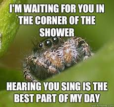 Shower Spider Meme - i m waiting for you in the corner of the shower hearing you sing is